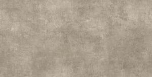 AT.ALPHA TAUPE 60x120(F)