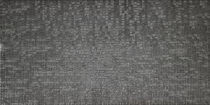 CAPUA PLATA 25x50